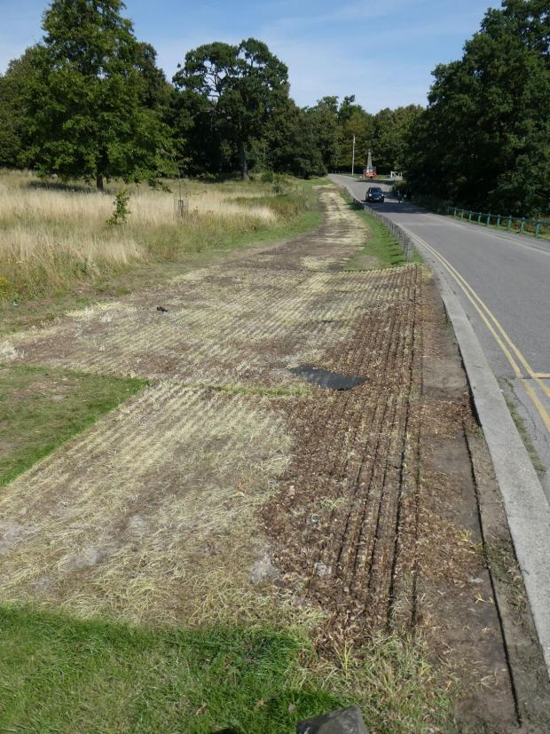 Enfield Independent: Damage to the surface of the park