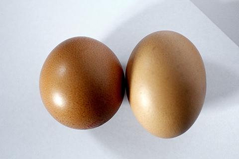 resepi telur sedap