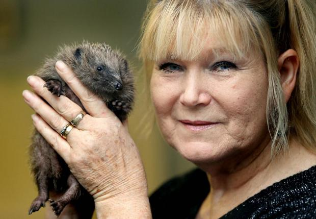 June Smitherman with a rescue hedgehog at the centre