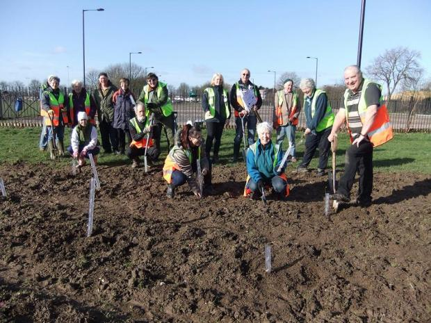 Friends of Enfield Playing Fields planted 100 trees on Friday