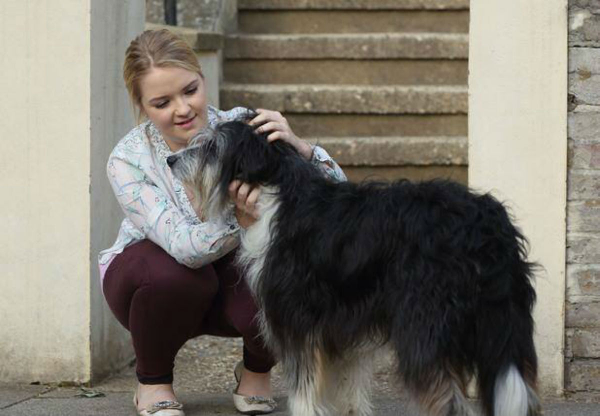 Enfield dog to appear on Eastenders