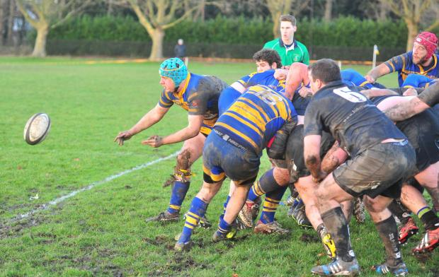 Home setback for Enfield Ignatians