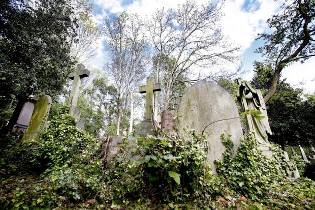 Enfield Independent: The eerie setting of Highgate Cemetery is believed by some to be among the most haunted hotspots in north London