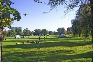 'Extraordinary' council meeting to discuss unlocked parks