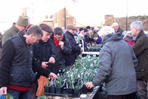 Record crowd at rare flower sale